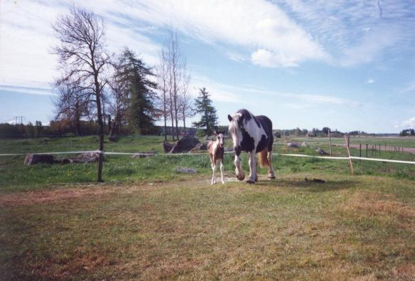 Alice&Indiana 1991